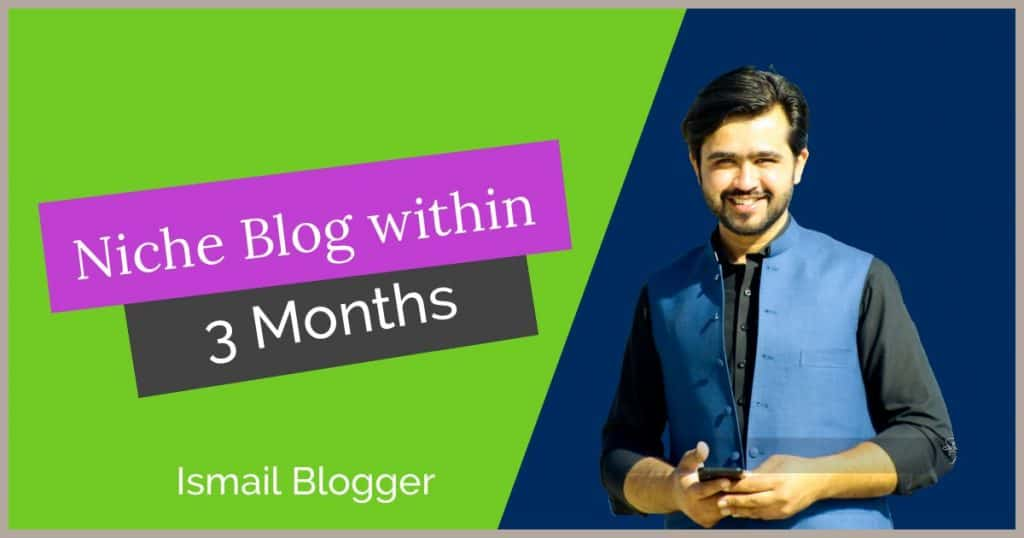 3 months niche blogging . course